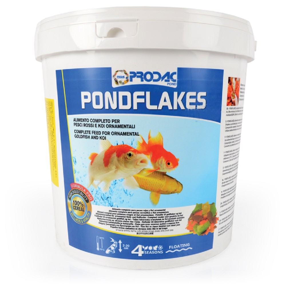 Pond fish food ponds tommiland for Fish suitable for small pond