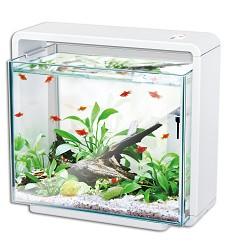 05107 Natur Biotop aquarium E-40 white
