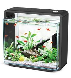 05108 Natur Biotop aquarium E-40 black