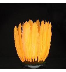 04758 Aqua LUMO Orange Fern Plant